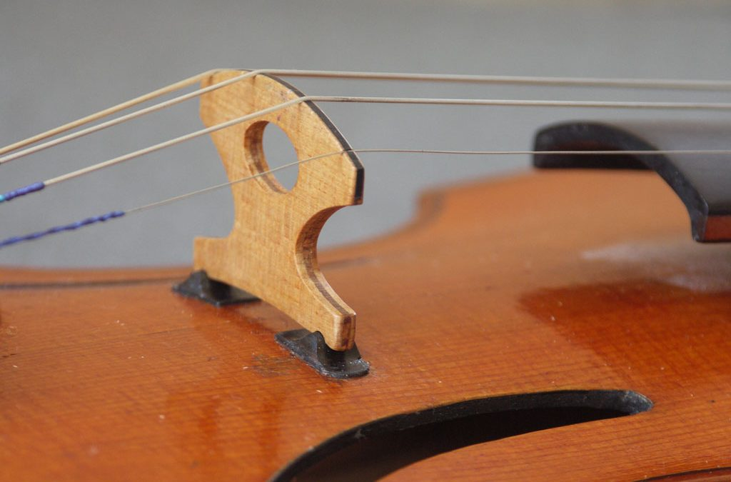 Subject to Change: Innovation among violinmakers